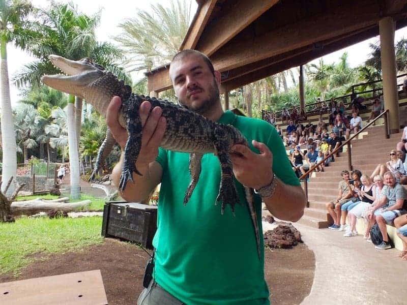 Espectáculo de reptiles